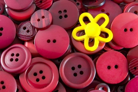 Red Buttons - Yellow Flower Stock Photo