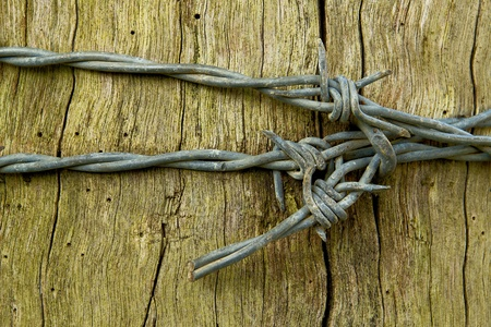 barb wire: Barbed wire bow Stock Photo