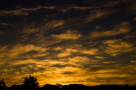Whispy Sunset