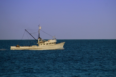 peschereccio: Fishing Boat