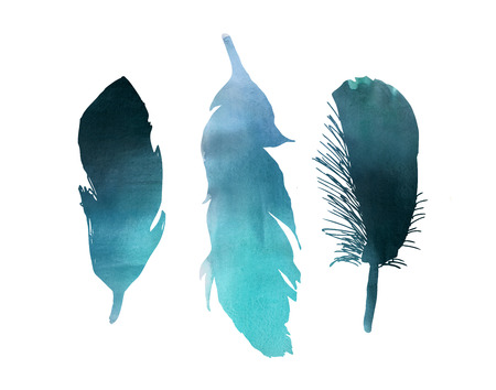 Blue Watercolor three bird feather