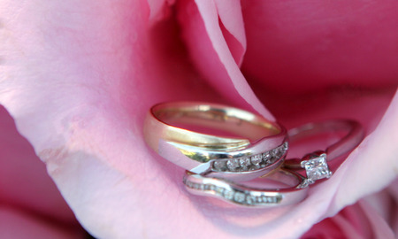 cor: Wedding Rings Bands in a Pink Rose Petal Flower