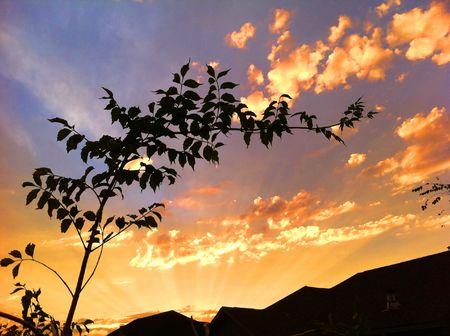 Autumn Sunset 版權商用圖片