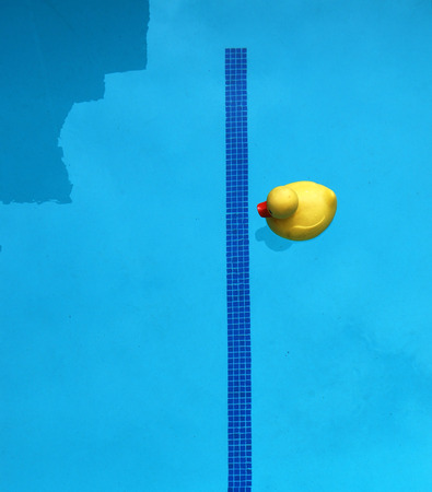 ducky: Rubber Ducky In Pool