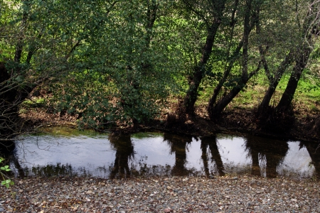 huelva: Small brook in the mountain of Huelva  Spain Stock Photo