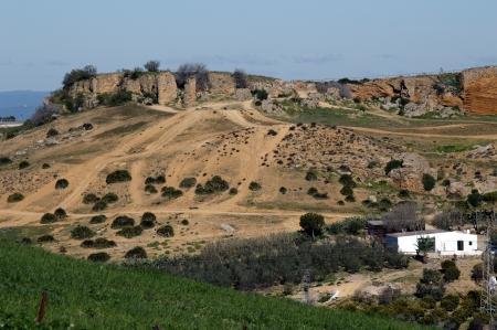 carmona: The countryside round Carmona  Sevilla  1 Stock Photo