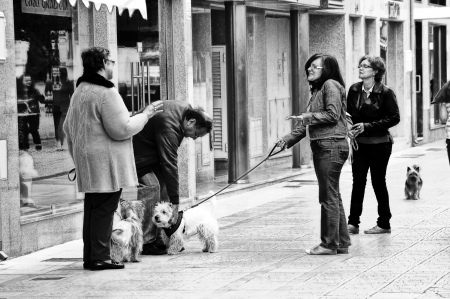Vila Real de Santo Antonio (Portugal) 19th May 2013: Street photo: People with small dogs