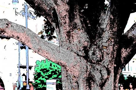 Detailof een boomstam