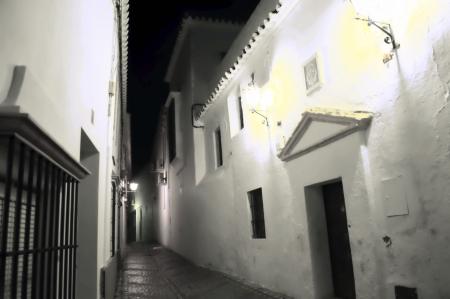 carmona: Carmona  Seville  at night 64