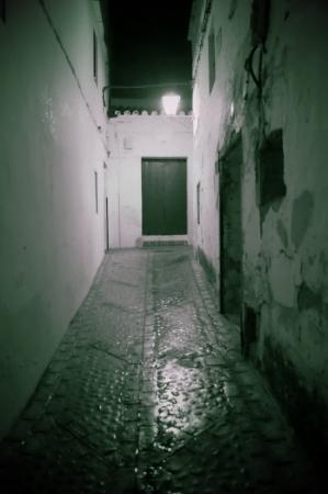 carmona: Carmona  Seville  at night 63