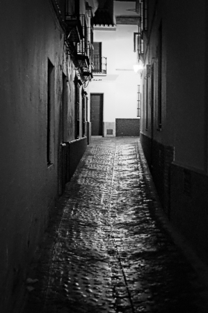 carmona: Carmona  Sevilla  at night 42