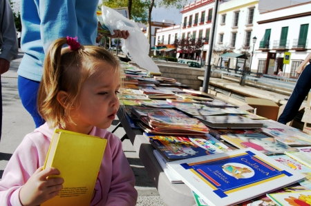 carmona: Carmona -Seville- Spain 3rd November 2013 - Solidarity book Fair 20 Editorial