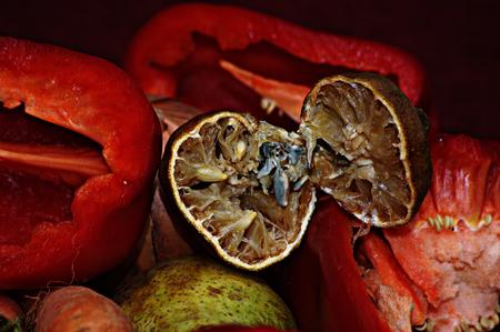 rotten: Still life with rotten lemon