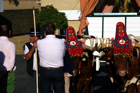 pilgrimage: Carmona, Sevilla, 6 September 2015 - Pilgrimage in honor of the patron saint