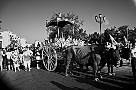 carmona: Carmona - Seville - Spain 4th September 2016 - Procession and pilgrimage in honour of the patron saint. Carts and bulls