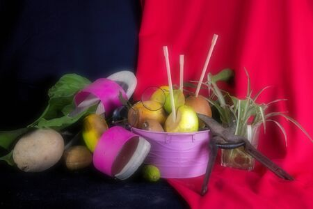This is still life, a home made compositon with some rotten fruit, gardening scissors and a pair of glasses Фото со стока