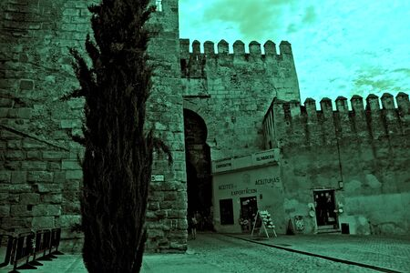 The heritage in Carmona. The Gate of  Seville. A Roman and moorish castle Archivio Fotografico - 131846646