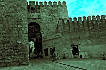 The heritage in Carmona. The Gate of  Seville. A Roman and moorish castle