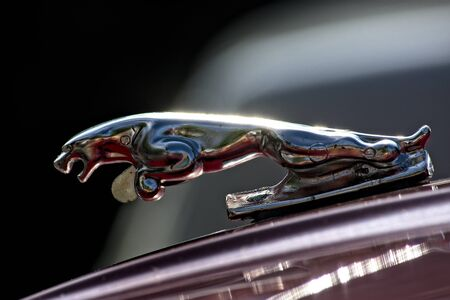 Detail of a car of the brand Jaguar. Vintage car concentration in Carmona (Seville)