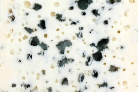 French blue cheese - Roquefort (close-up)