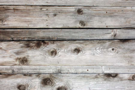 veiny: Old wood texture