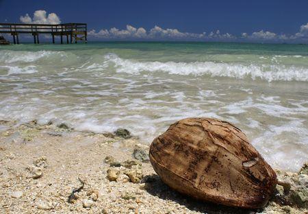 ビーチにココナッツ 写真素材