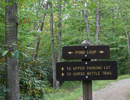 wooden trail sign: Wooden trail sign on forest trail saying pond loop Stock Photo