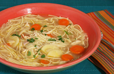 parsnips: Bowl of chicken noodle soup with carrots, parsnips and parsley