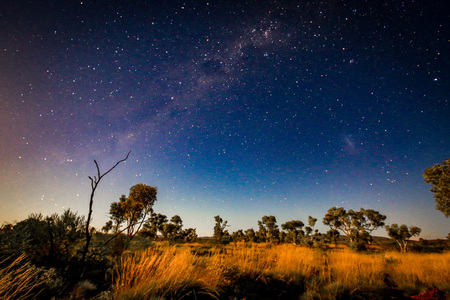 Stars night sky over outback landscape