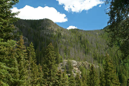 partly: A tree covered mountain under a partly cloudy blue sky