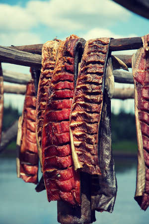 Fresh caught Salmon hanging to dry and smoke in by River in Fairbanks Alaska Standard-Bild