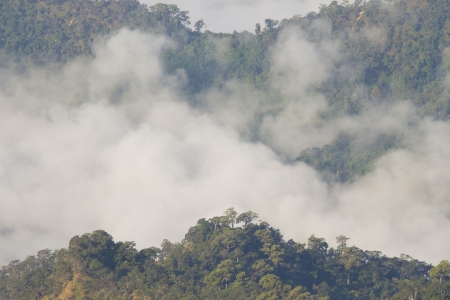 fog and cloud mountain valley landscape thailand photo