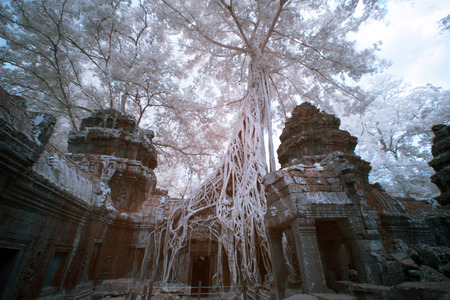 near: Near infrred Temple in Angkor Thom, near Siem Reap, Cambodia Stock Photo