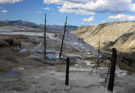 Mammoth Hot Springs and dead trees and small lakes Stock Photo