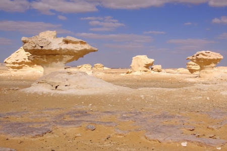 Wind and sand modeled limestones sculptures in white desert