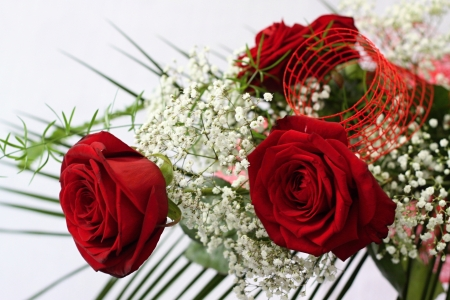 Three red roses and whitte flowers with green leafs Stock Photo