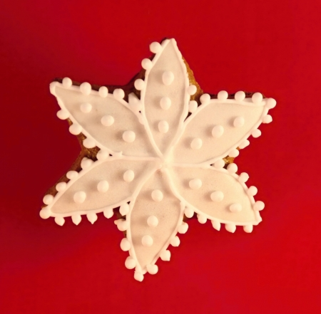 Christmas star made by gingerbread aranged on red background