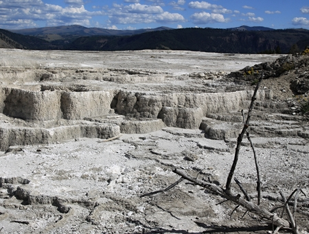 Yellowstone, Mammoth hot springs Terraces  photo