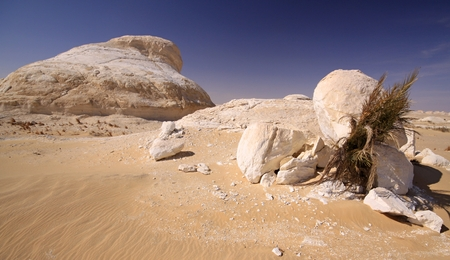 Limestone hills in White desert and date tree