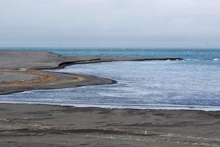 Coast and beach with black volcano sand in Iceland