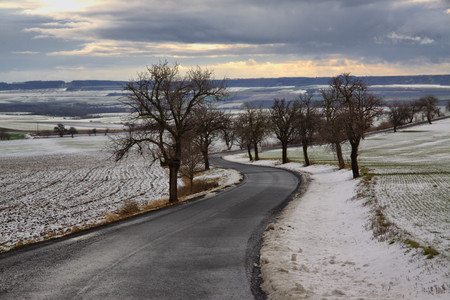 Czech Middle Mountains near Louny town and side road with the tree Stock Photo