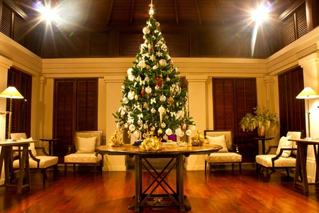 Christmas tree adorned with  lights and sparkling stars photo