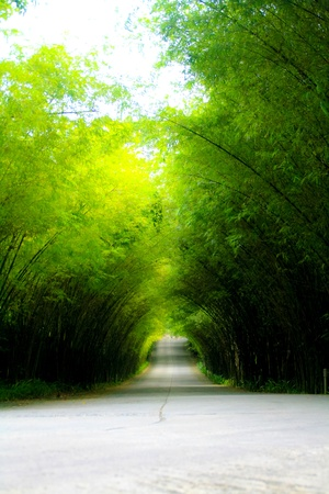 The streets are filled with bamboo sides