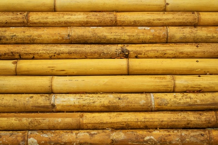 Background of bamboo wall