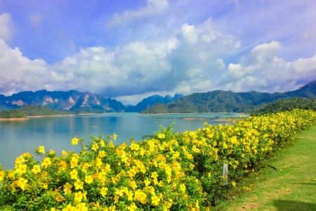 Crest of the  Ratchaprapa dam in Surat Thani, Thailand photo