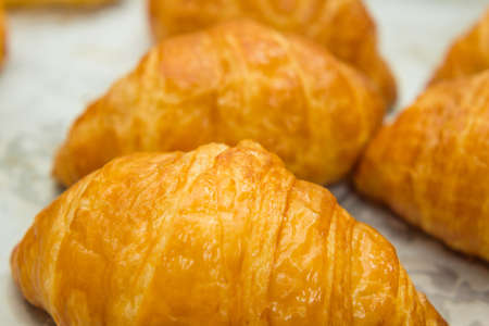 Fresh and tasty butter croissant photo
