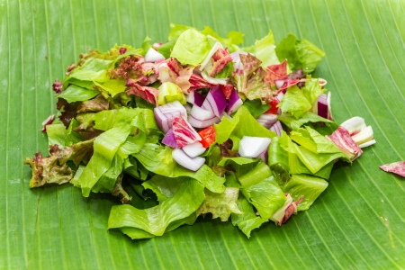 bell peper: Romain, leaf lettuce with radicchio chopped and capsicum