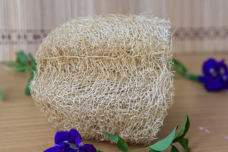 luffa: Natural Luffa Sponge