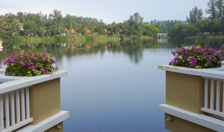 kyklades: View of pond from Balcony