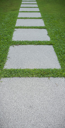 stone path: Stone path on the green grass